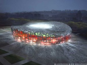 The Bird's Nest Stadium