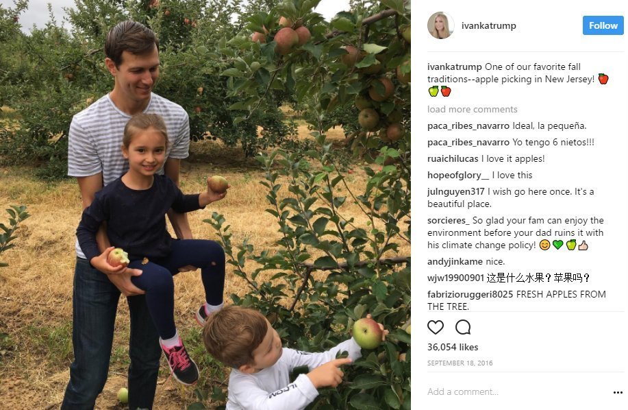 Image result for One of our favorite fall traditions--apple picking in New Jersey!